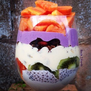 Chia Pudding Parfait with